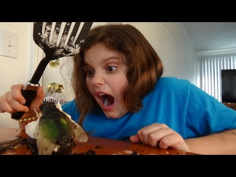 Giant Flies Invade House Spatula Girl Attacks 'Toy Freaks
