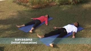 Sivananda Yoga Basic Class  60 min