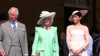 Prince Harry pays tribute to Charles on his 70th birthday - 5 News