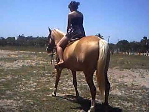 Luciana s. cavalgando.