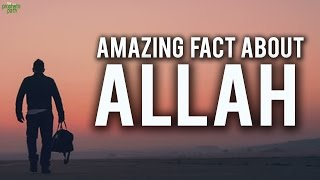 Amazing Fact About Allah