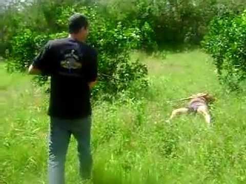 Assassinato ao vivo em Salgado