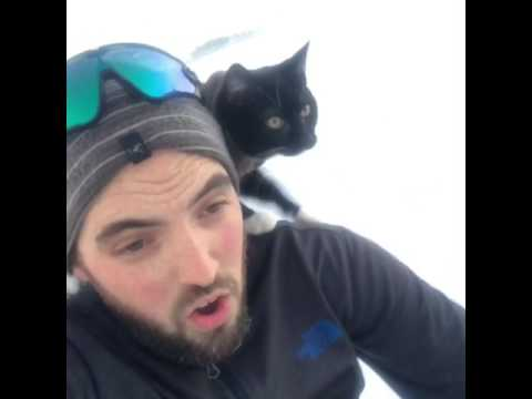 Sledding with my cat.