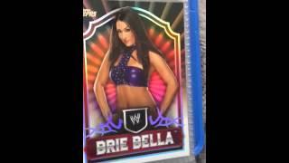Brie Bella nude as fuck