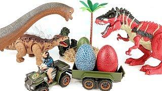 Catch The Thief Who Steals Dinosaur Eggs! Dinosaur Movie for Kids~ Jurassic World Toys~
