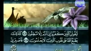 القرآن الكريم - الجزء الحادي والعشرون - تلاوة سعد الغامدي - 21