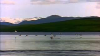 Lake PAISAGENS com Passaros voando rio e montanhas
