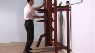 Ip Man Wooden Dummy Form