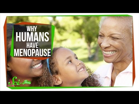 Why Do Humans Have Menopause