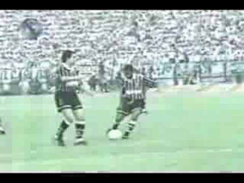 Palmeiras campeão Brasileiro Bi campeão 1993 1994
