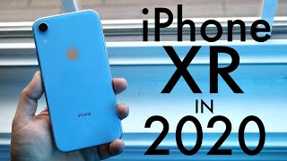 iPhone XR In 2020! (Still Worth It?) (Review)