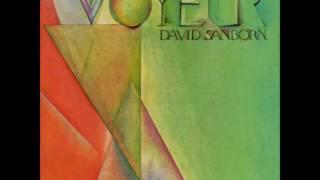 David Sanborn - Run For Cover