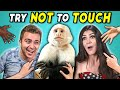 Try Not To Touch Challenge #7 (ft. A Monkey!)