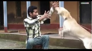 Nepali Comedy Short Movie Video - Marriage Culture