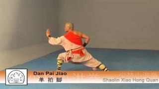 Shaolin Xiao Hong Quan Form