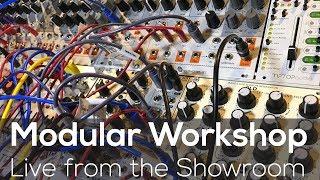 Modular Workshop - Live @ Analogue Zone Showroom E02