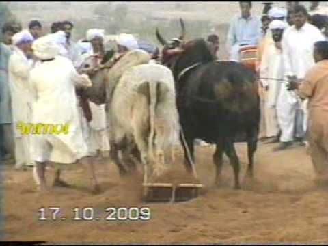 JHAMRA SHARIF CHAKWAL JALSA ON MELA 2009 AT ARAA BY MANI HAKAM PART 4.MPG