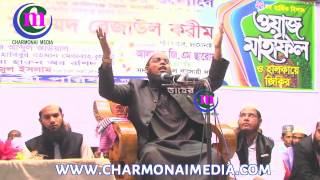 দুঃখিনী মা এর ওয়াজ না শুনলে বিরাট মিস Mufti Habibur Rahman Mhsbah