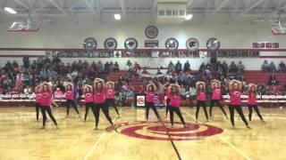 Ottawa High School Dance Team Think Pink Night,