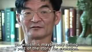 Investigating Evolution The Cambrian Explosion PART 1 flv   YouTube