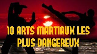 LES 10 ARTS MARTIAUX LES PLUS DANGEREUX !