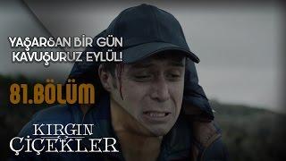 Kırgın Çiçekler 81.Bölüm - Kemal'in Eylül pişmanlığı!