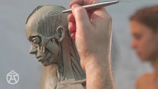 Live demo – anatomy female Andrew Cawrse - ecorche sculpture