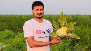 BBQ Indian Curry with 168 Layered Paratha By Nikunj Vasoya | Indian Village Cooking