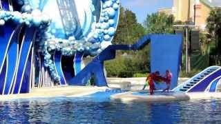 Blue Horizons, SeaWorld, Orlando, Florida