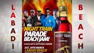 Night Train Beach Jam with Sarkodie, D-Black, Joey B, E.L, Bisa & more!!