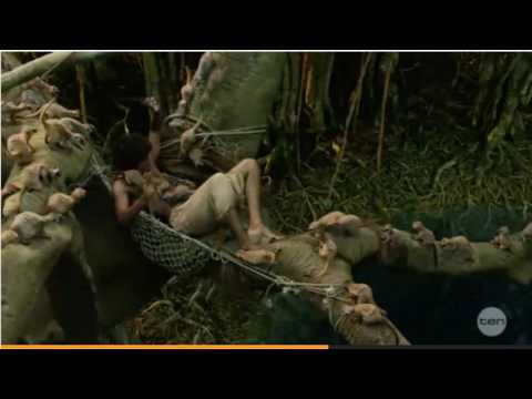 Xxx Mp4 Life Of Pi Island Scene 3gp Sex