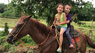 Filipino-American KIDS FIRST time Riding a Horse in the Philippines PART 1