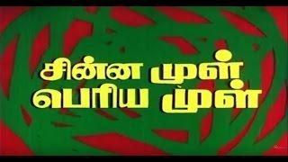 Chinna Mul Peria Mul - Full Movie HD