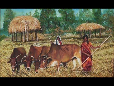 Indian Cow from Artists perspective