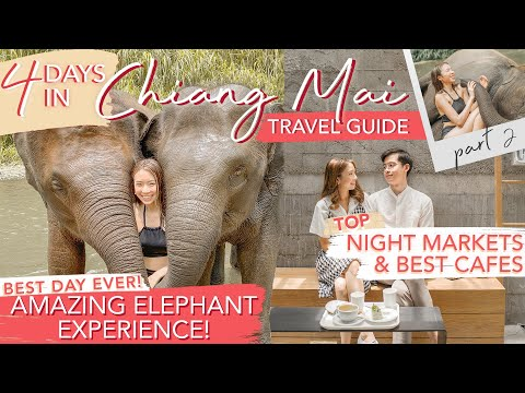 MOST INCREDIBLE ELEPHANT EXPERIENCE in CHIANG MAI THAILAND Must Visit CAFES Hotel GIVEAWAY