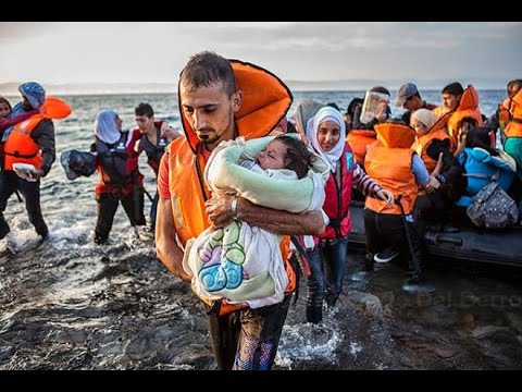 How Would You Handle The Refugee