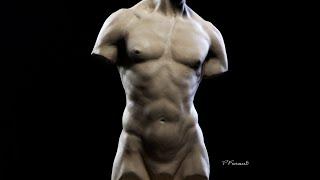 Sculpting a torso