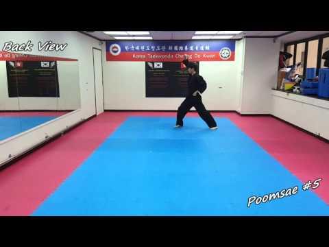 Xxx Mp4 Taekwondo Poomsae 5 Oh Jang Slow Motion Mirror 3gp Sex
