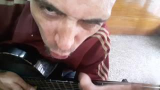 Cómo tocar Tarea fina Redonditos de Ricota con guitarra criolla Acordes Tutorial Letra Cover
