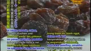 Nutritious raisins 營養的葡萄乾