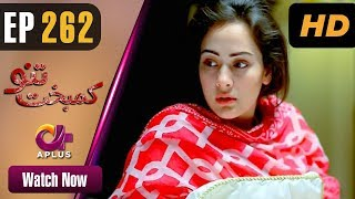 Kambakht Tanno - Episode 262 | Aplus ᴴᴰ Dramas | Tanvir Jamal, Sadaf Ashaan | Pakistani Drama