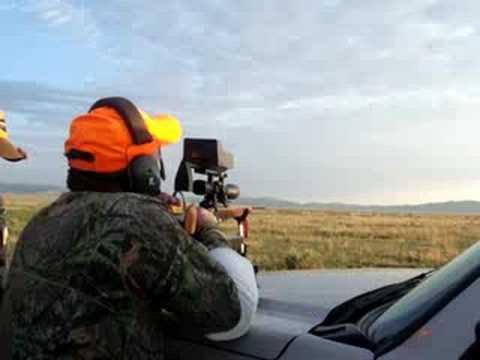 Blind Hunter Bags Antelope
