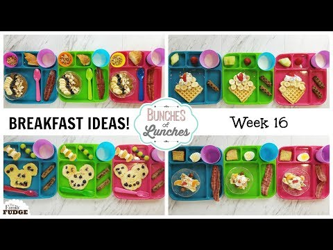 FUN Breakfast Ideas for KIDS What They Ate Bunches of Lunches Breakfast Edition