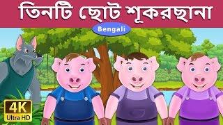 তিনটি ছোট শূকরছানা - শয়নকাল গল্প - বাংলা রূপকথা - 4K UHD - Bengali Fairy Tales
