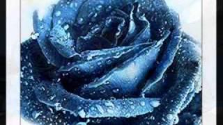 Una Rosa Blu...  Michele Zarrillo