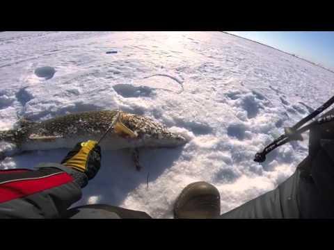 Сатыгинский туман озеро в хмао рыбалка