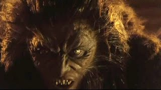 Code Elektro - Wolf (unofficial music video)