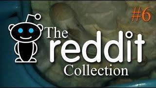 The Reddit Collection #6 - Cum Bin