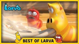 LARVA | BEST OF LARVA | Funny Cartoons for Kids | Cartoons For Children | LARVA 2017 WEEK 31