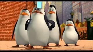 مزيكا رقصة البطريق
